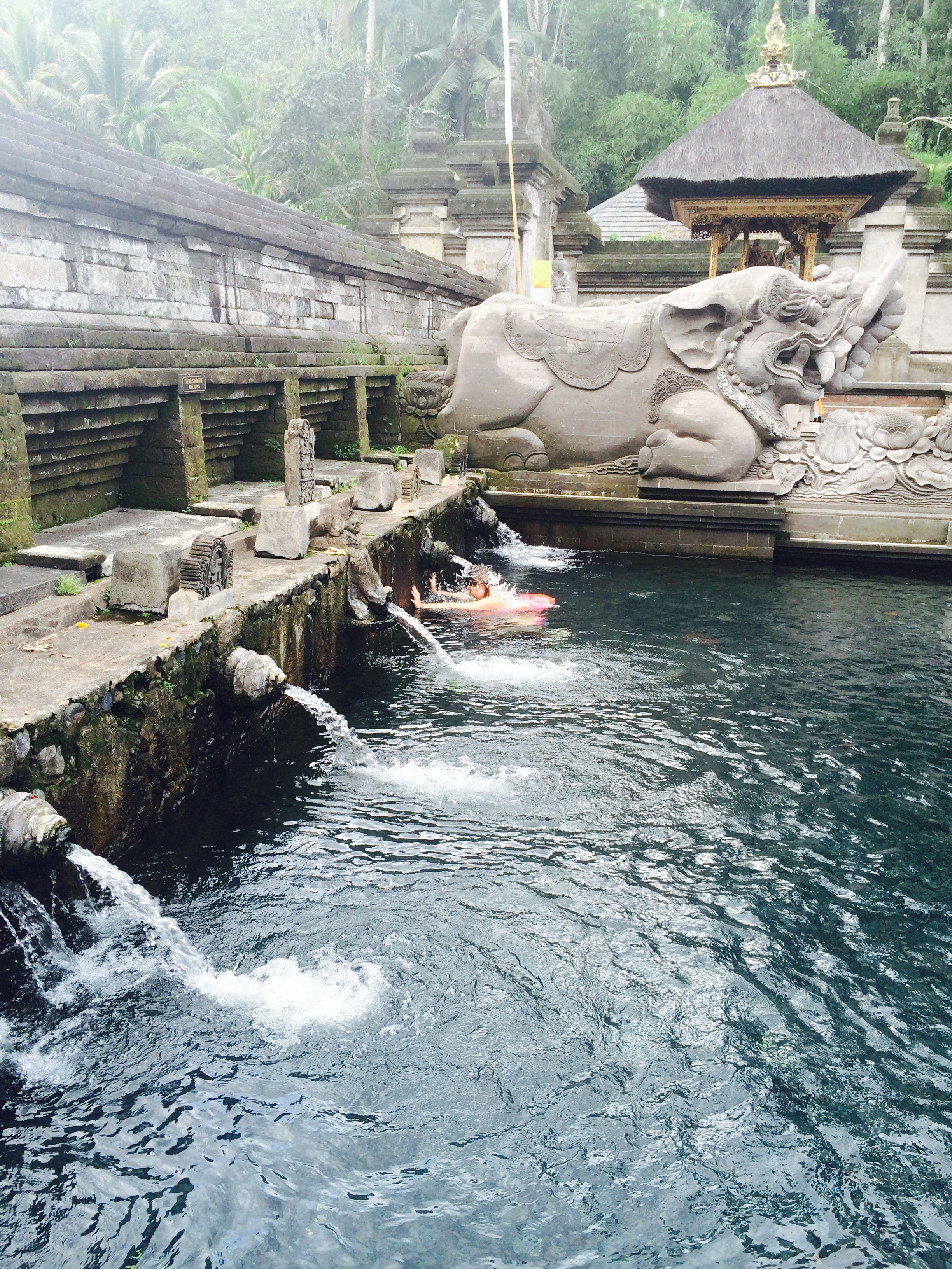 Interesting experience in Ubud: Tirta Empul Temple