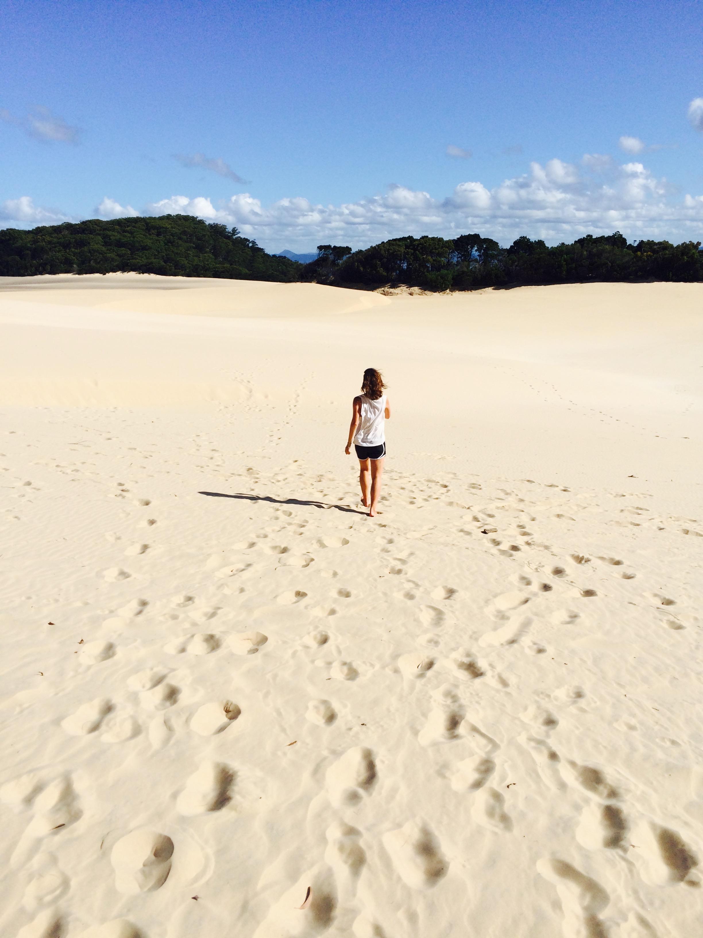Sand Dunes, Everglades