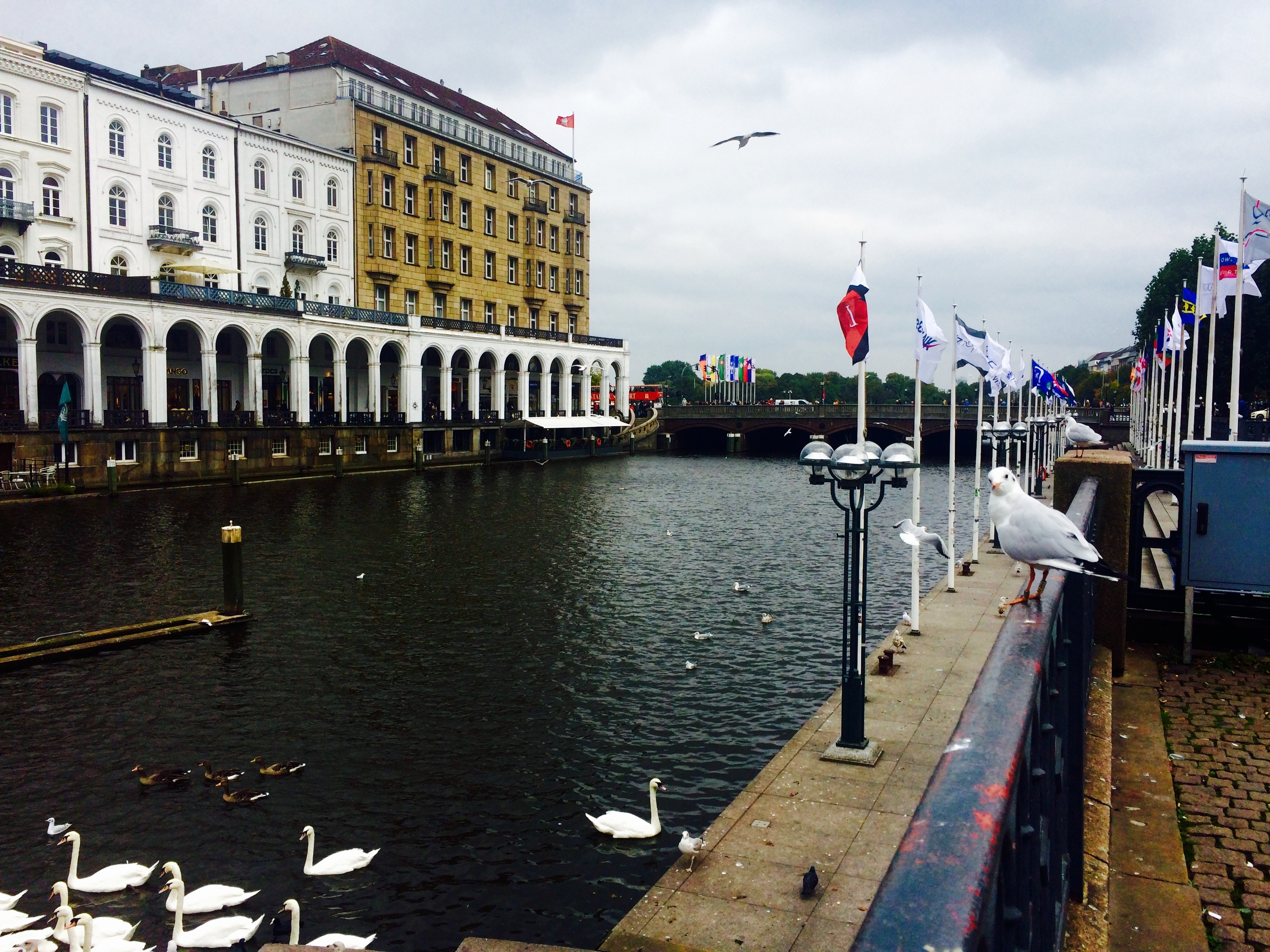 Discover best of Hamburg, Germany: Alster