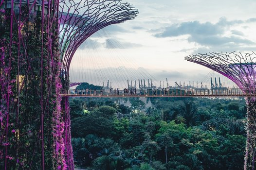 The Gardens and Supertree Grove in Singapore