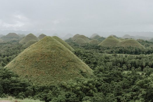 Chocolate Hill, Bohol, Philippines